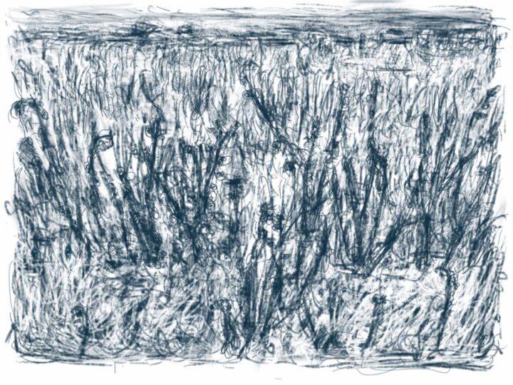 Han Klinkhamer: De dagelijkse tekening uit Zundert – 27.11.2011
