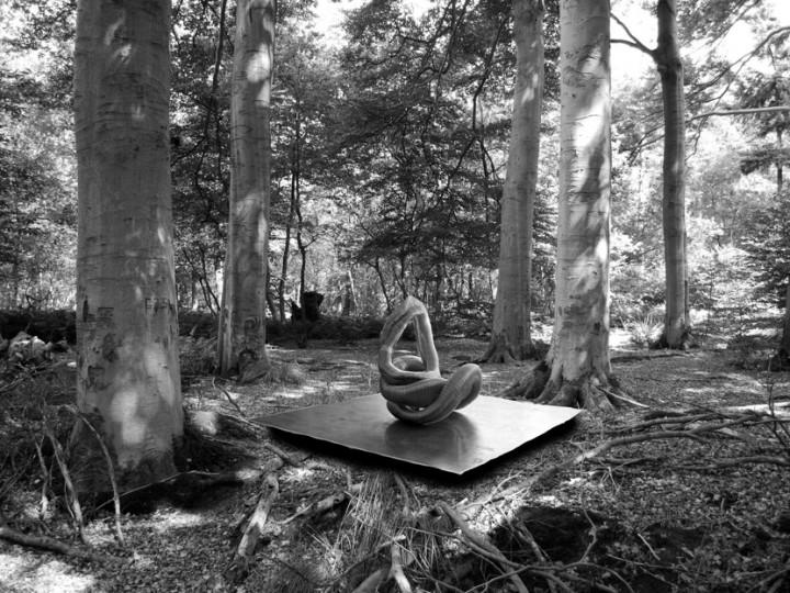 Iris Bouwmeester: artist's impression