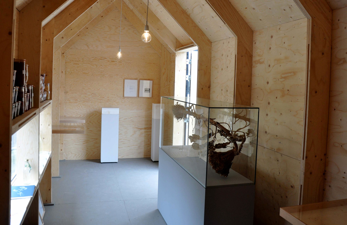 Loek Grootjans Vincents Asylum interieur