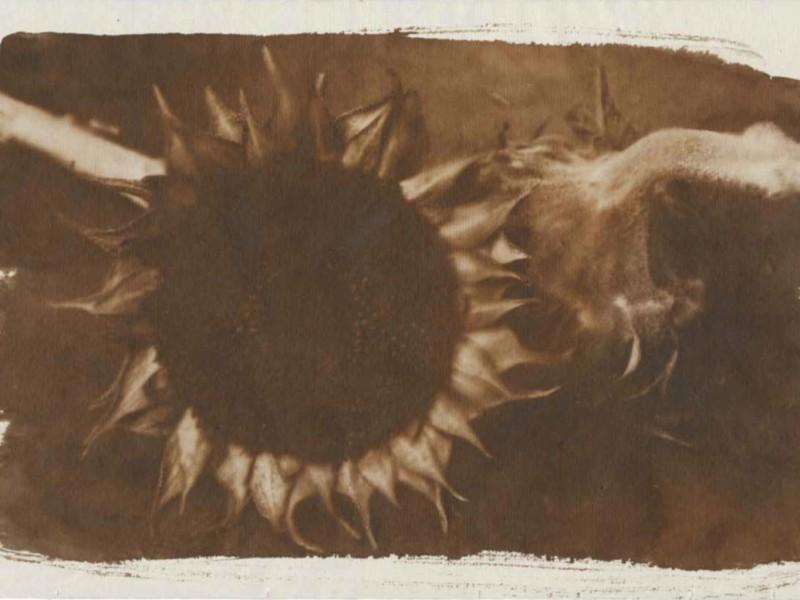 Geest Gogh by Salvo